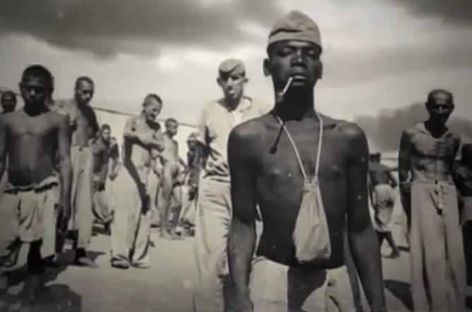 blacks in the holocaust - photo #8