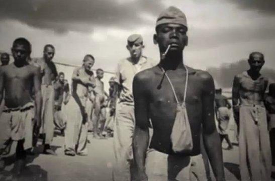 Brazilian Holocaust