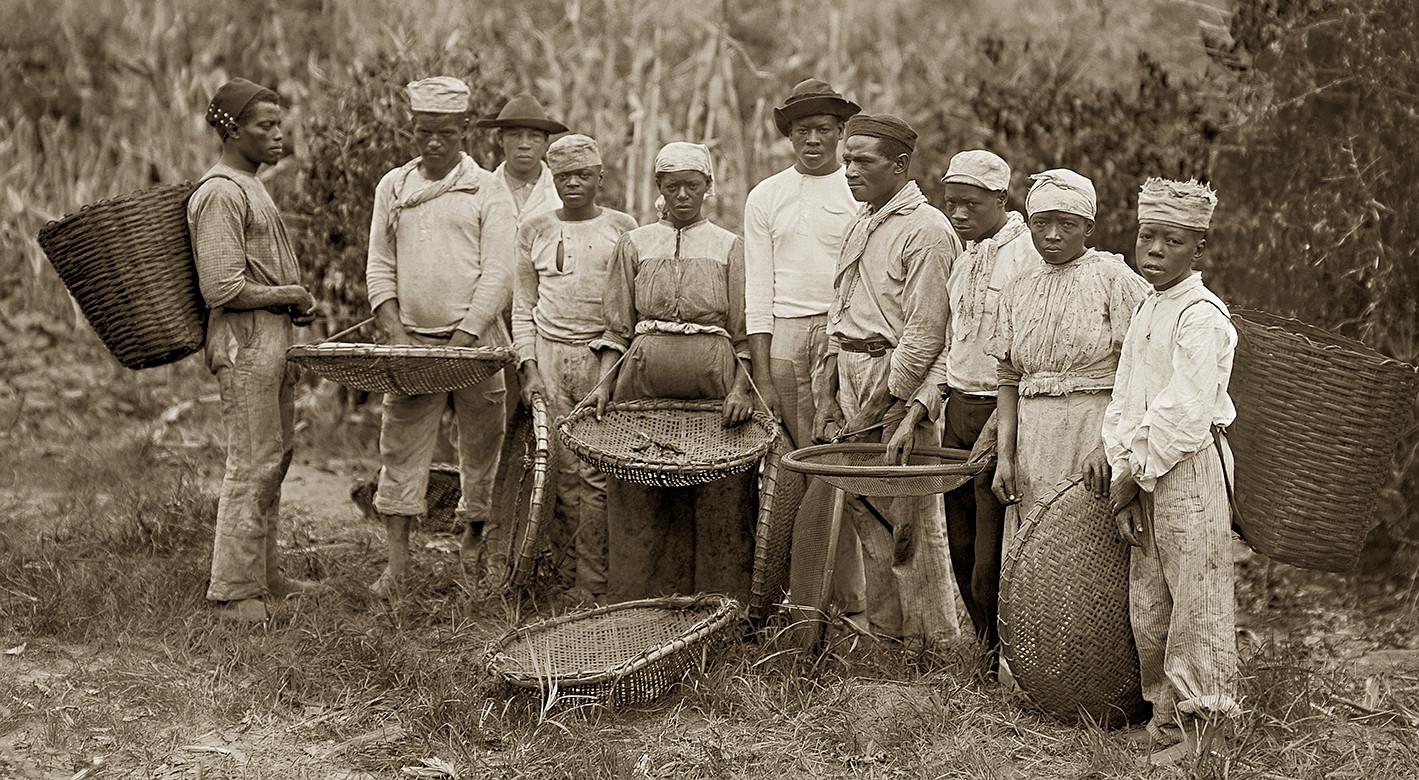 slavery in brasil essay