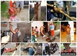 Lynchings throughout Brazil