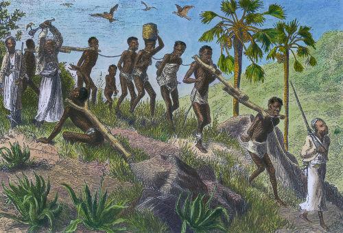 a-escravidao-poderia-ter-sido-gradualmente-extinta-no-brasil-logo-no-inicio-fase-imperial-572cb1c549bb2